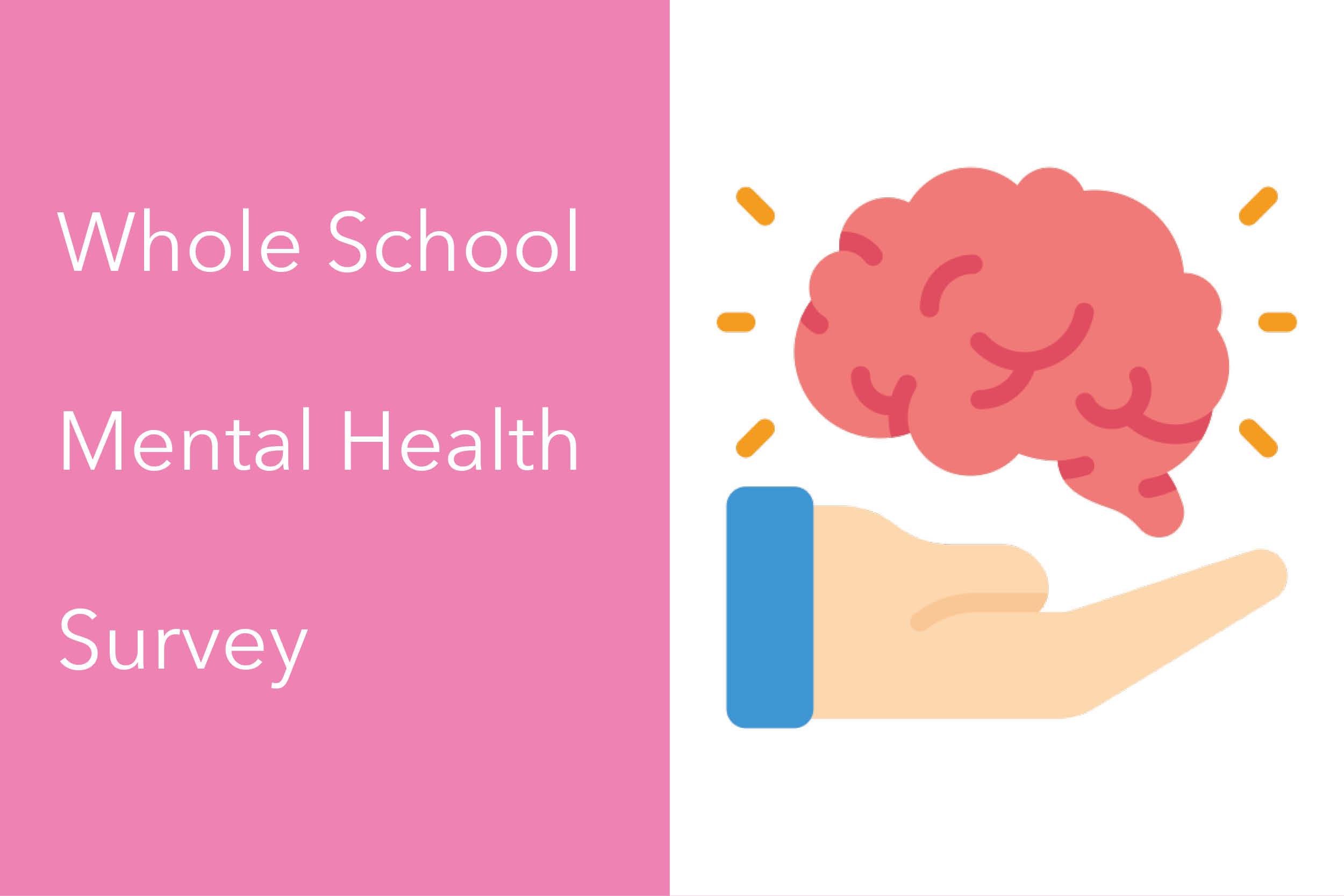 Whole School Mental Health Survey